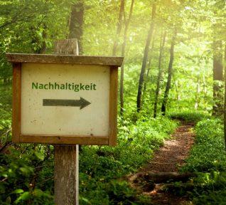 Wegweiser im Wald Richtung Nachhaltigkeit