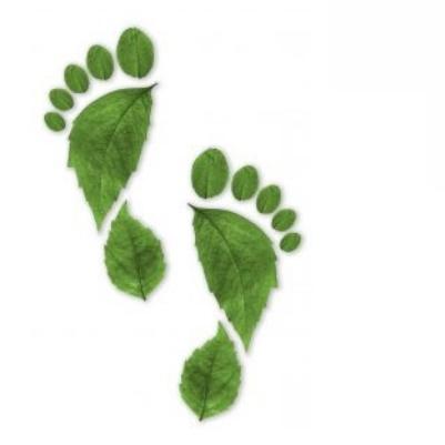 Grüner Fußabdruck aus Blättern